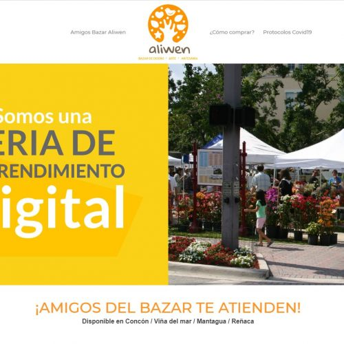Sitio web, estrategia digital
